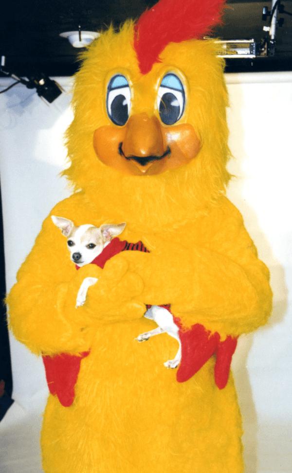 El Pollo y el Perrito